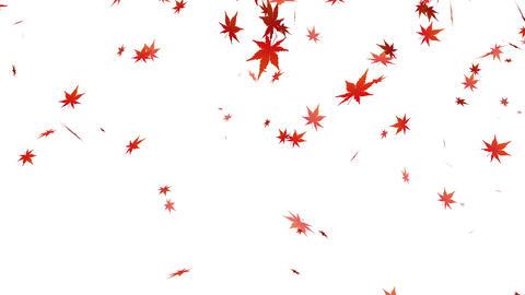 Autumn leaves animation Animation