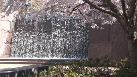 Tourists admire the FDR Memorial in Washington DC Stock Video Footage