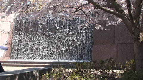 Tourists admire the FDR Memorial in Washington DC Footage
