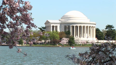 The Jefferson Memorial in Washington, DC is framed by... Stock Video Footage