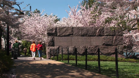 Tourists walk by a monument surrounded by cherry blossoms Footage