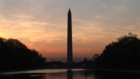 Colors in the sky intensify around the Washington Monument, as birds fly by Footage