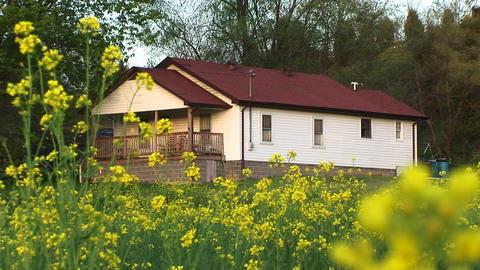Bright yellow flowers surround a modest white house with... Stock Video Footage