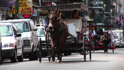 Mule buggies follow each other down a crowded street in... Stock Video Footage