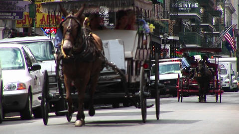 Mule buggies follow each other down a crowded street in New Orleans Footage