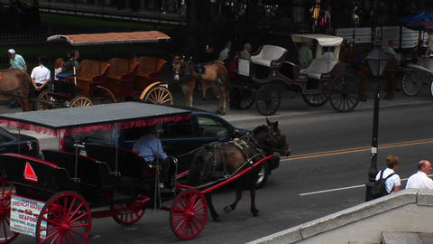 Mule-drawn buggies wait for tourists, while another buggy... Stock Video Footage