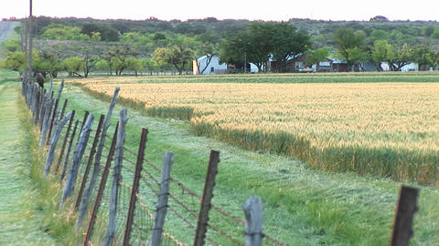 Long-shot of Texas ranch buildings through a barbed wire... Stock Video Footage