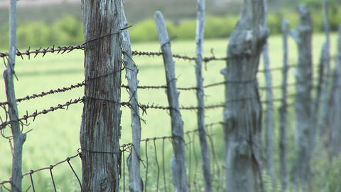 Close-up of barbed-wire wrapping around cedar fence posts Stock Video Footage