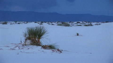 The White Sands National Monument in New Mexico Stock Video Footage