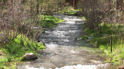 Medium shot of a flowing mountain stream Footage