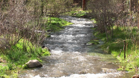 Medium shot of a flowing mountain stream Stock Video Footage