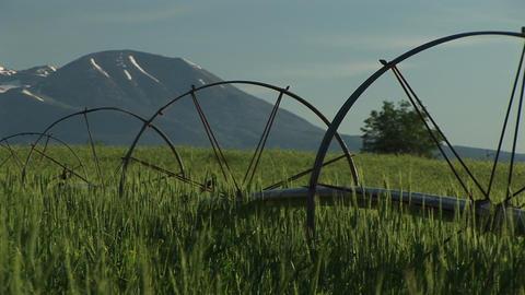 Medium shot of irrigation sprinklers on Utah farmland and... Stock Video Footage