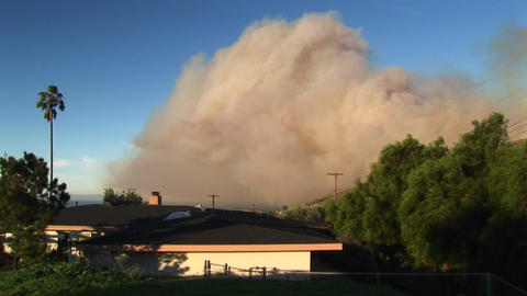 Long shot of a wall of smoke rising from wild fires... Stock Video Footage