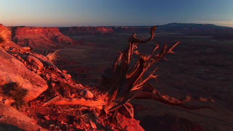 Medium-shot of Canyonlands National Park at sunset with the La Sal Mountains in the background Footage