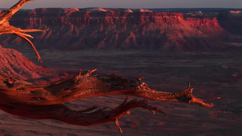 Medium-shot of the La Sal Mountains in Canyonlands... Stock Video Footage