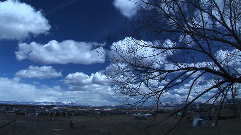 Wide shot of sky in Colorado with car graveyard and tree branch in the foreground and Rocky Mountain Footage