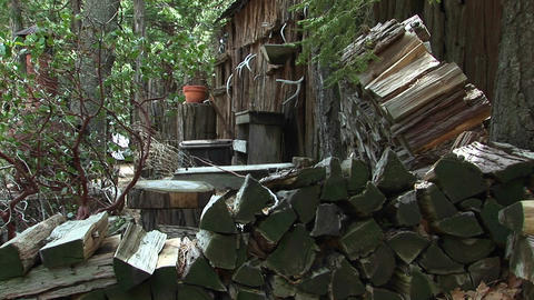 Medium shot of rural cabin with wood pile in the Sierra Nevada mountains Live Action