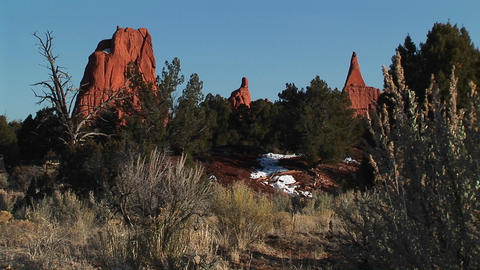 Medium shot of desert plants and sandstone spires in the Kodachrome Basin in the Utah backcountry Footage
