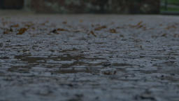 Raining on Muddy Pavement Footage