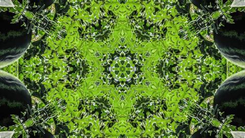 Kaleidoscope fruit vegetable 4k310 Footage