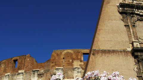 detail of coliseum during a spring day Footage