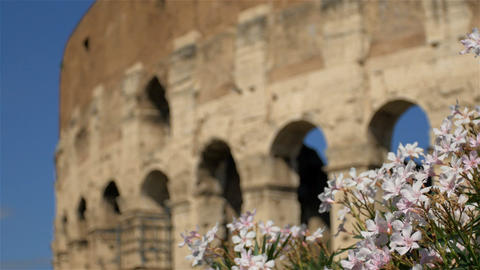 beautiful detail of beautiful Colosseum, Rome Footage
