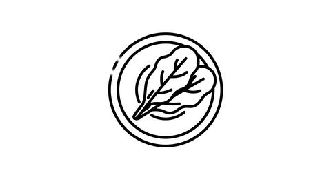 Bowl of greens line icon on the Alpha Channel Animation