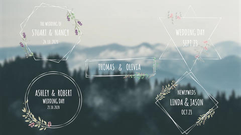 Wedding Titles V2 After Effects Template