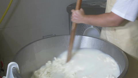 e Manufacture Of Dairy Curd Products. italian typical food production Footage