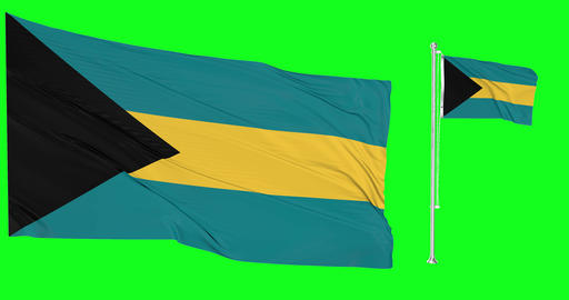 Two flags waving The Bahamas waving island waving flagpole national The Bahamas national island Animation