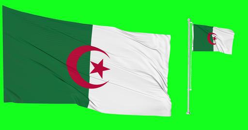 Two flags waving Algeria waving flag national algerian national Algeria national flagpole green Animation