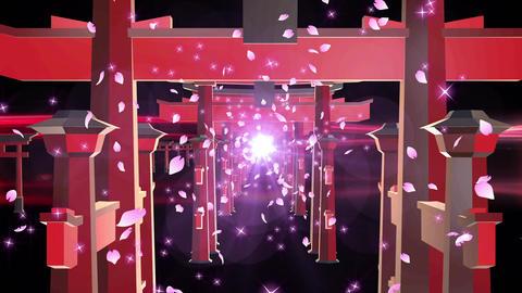 Torii sakura shrine temple loop animation Animation