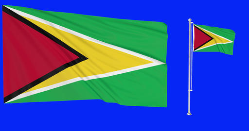 Two flags waving Guyana waving guyanese waving flagpole national Guyana national guyanese national Animation