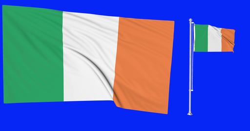 Ireland green screen Two flags green screen waving green screen Ireland irish flagpole irish waving Animation