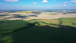 aerial video flight over agricultural fields, forests, river at high altitude Live Action