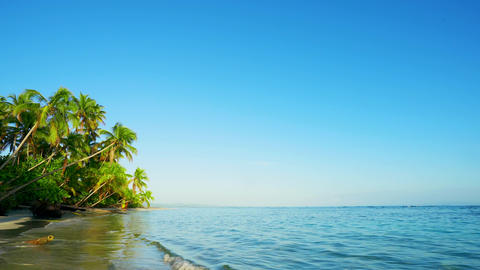 Indian ocean palm island landscape. Malaysia beach landscape. Beach and sea background. Loop video Live Action