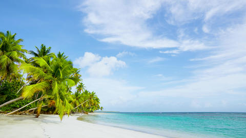 Tropical seascape. Intact clear white sand beach background Live Action