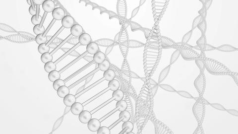 DNA image cg 001 Animation