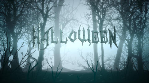 Animation text Halloween and mystical background with dark forest and fog, abstract backdrop Animation
