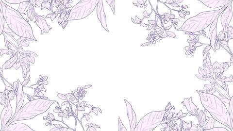 Botanical 0206 loop 097-192f plants frame pink 애니메이션
