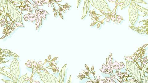Botanical 0207 loop 097-192f plants frame natural 애니메이션