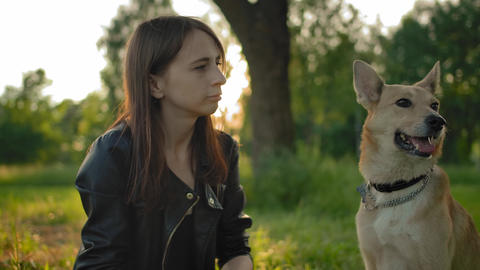 Close-up of tender relationship between the mistress and her dog Live Action