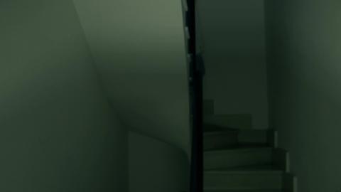 devilish blonde woman down stairs ビデオ