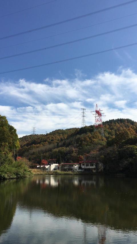 田川浦湖 Footage