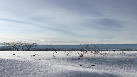 雪 ビデオ