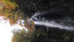 小野の滝 ビデオ