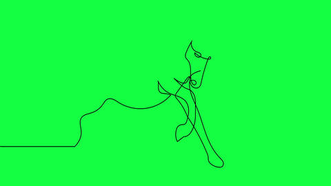 Self drawing animation of continuous one line drawing of isolated vector object - horse on green Animation