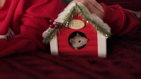 A small live mouse looks out of a small wooden Christmas house and nibbles on it Live Action