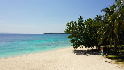View of nice tropical beach with palm tree. Holiday and vacation concept Live Action