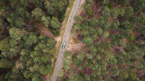 Car in rural road in deep forest view from above, Aerial view car in the forest Live Action